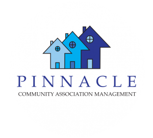 Pinnacle CAM logo in white circle
