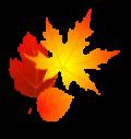 fall-leaves-sm